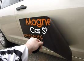 Magnetna folija NATUR 800